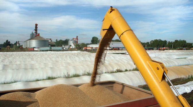 Planta de reciclado de silos bolsa y bidones del campo