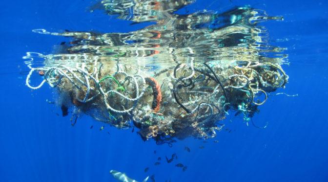 Plásticos, enemigos de los mares