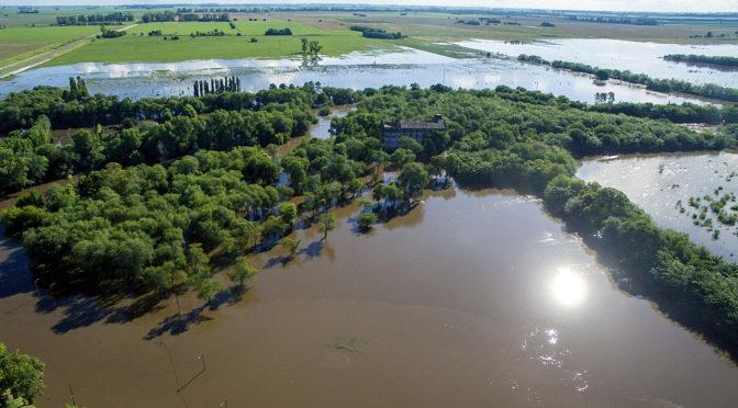 La soja, el monocultivo es la principal causa de las inundaciones
